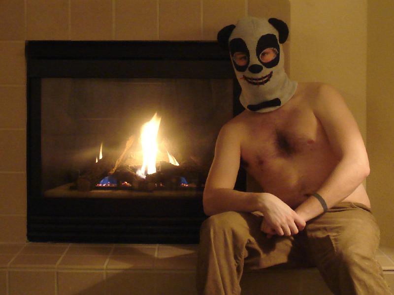 romantic panda