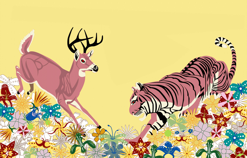 deer vs tiger
