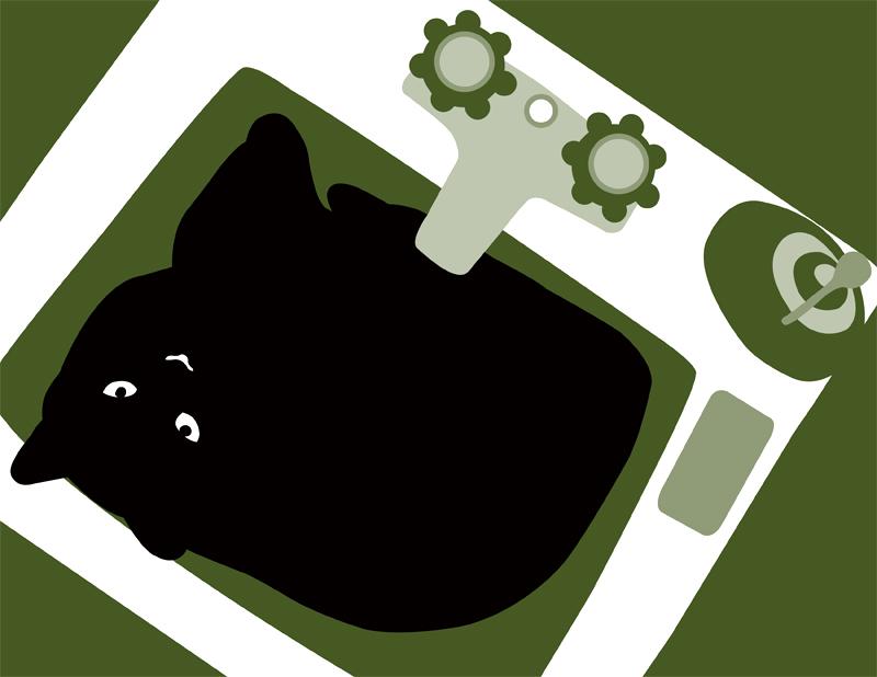 sink kitty