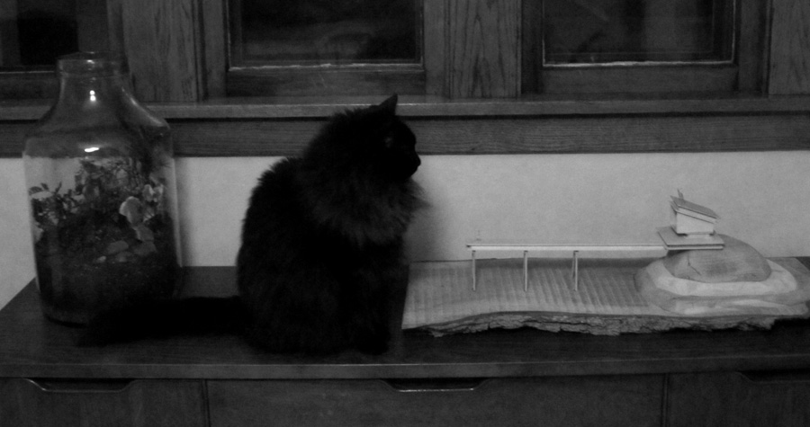 carl ponders his scale