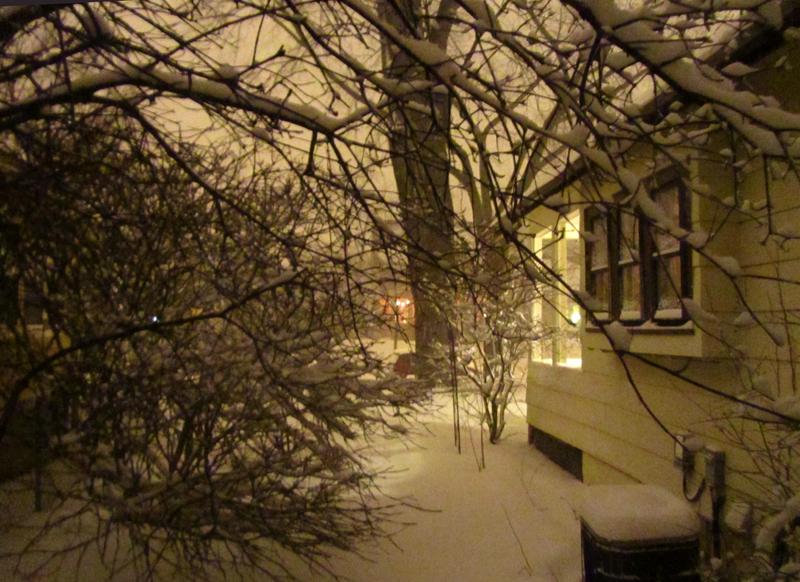 2011_02_20_blizzardthree