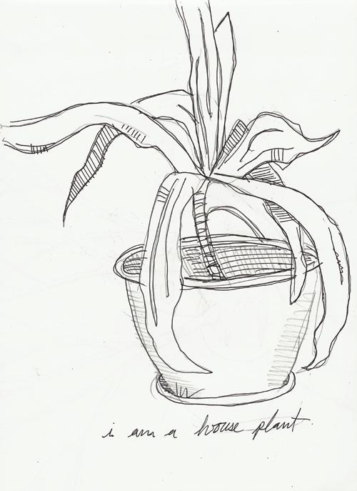 i am a house plant