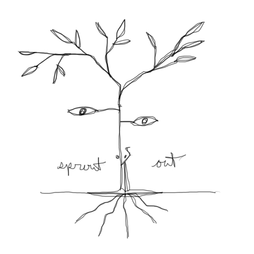 sprout out