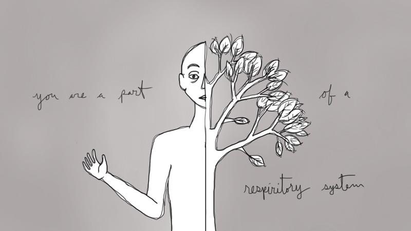 respiritory system