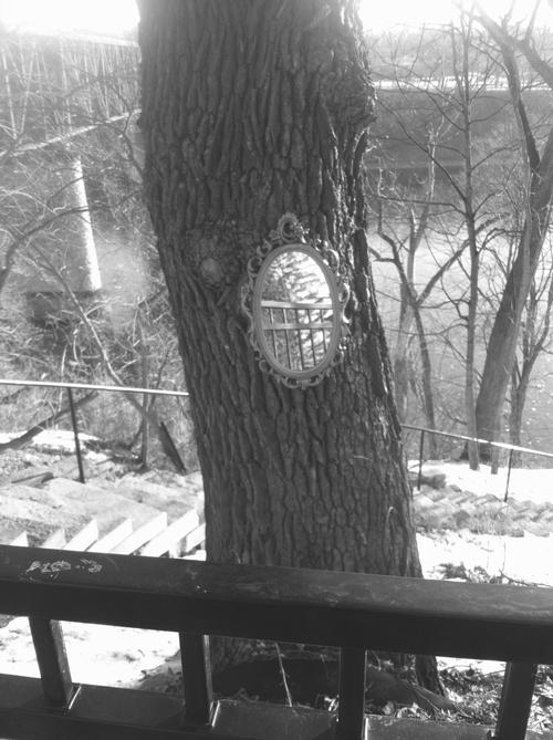 woods mirror