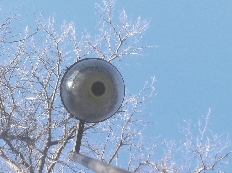 woods eyeball