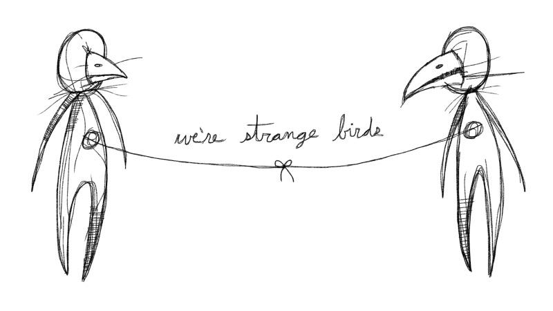 we're strange birds