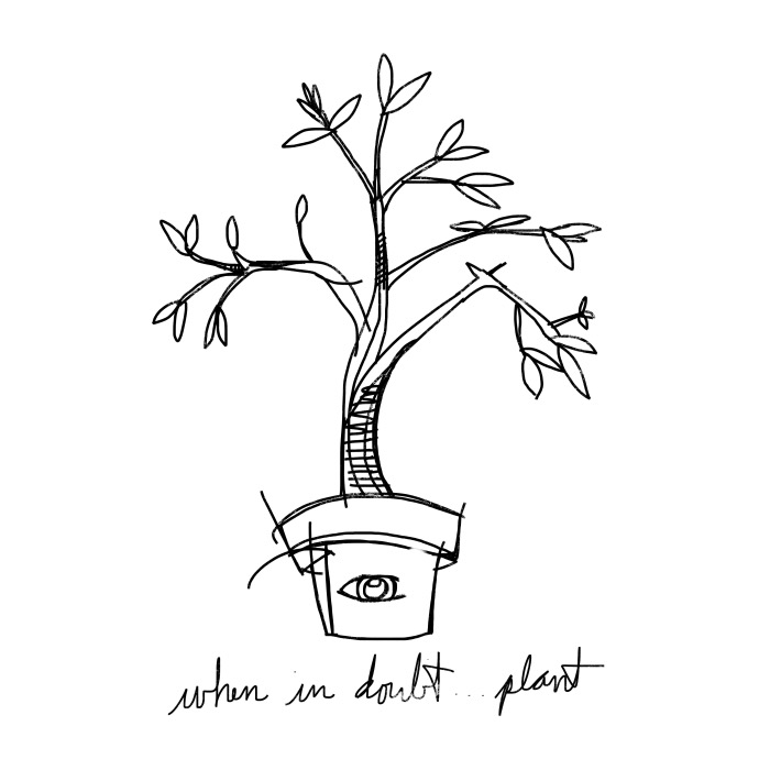 When in doubt ... plant